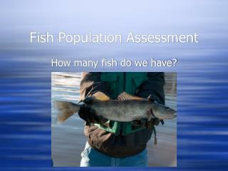 Fish Population Assessment