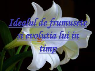 Idealul de frumusete si evolutia lui in timp