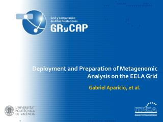 Deployment and Preparation of Metagenomic Analysis on the EELA Grid