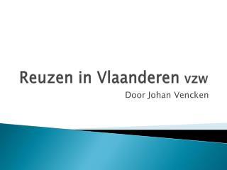 Reuzen in Vlaanderen  vzw
