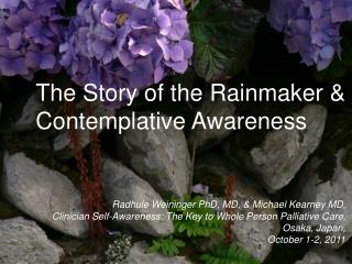 The Story of the Rainmaker & Contemplative Awareness