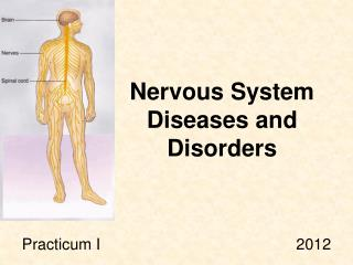 Nervous System Diseases and Disorders