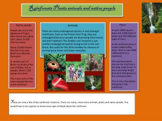 Rainforests Plants animals and native people