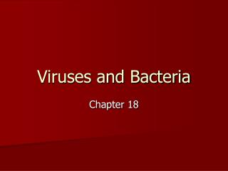 Viruses and Bacteria
