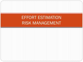 EFFORT  ESTIMATION RISK MANAGEMENT