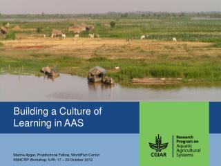 Building a Culture of Learning in AAS
