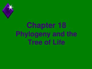 Chapter 18 Phylogeny and the Tree of Life