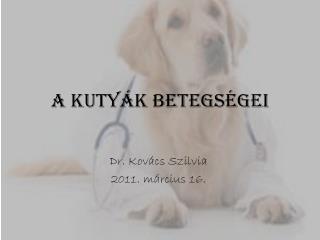 A kutyák betegségei