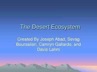 The Desert Ecosystem