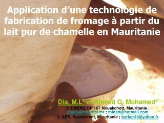 Dia, M.L 1  et Ahmed O. Mohamed 2