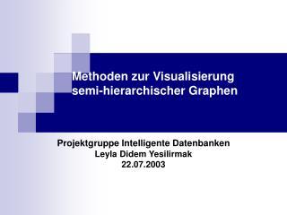 Methoden zur Visualisierung semi-hierarchischer Graphen