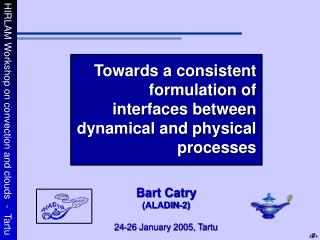 Towards a consistent formulation of interfaces between dynamical and physical processes