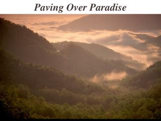 Paving Over Paradise