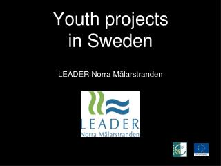 Youth projects in Sweden