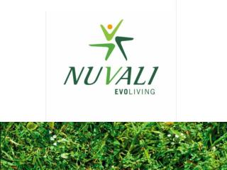 "NUVALI  stands for new beginnings.    "" Nova ,""  Latin for birth of a star"