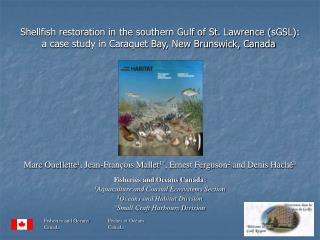Shellfish restoration in the southern Gulf of St. Lawrence sGSL: a case study in Caraquet Bay, New Brunswick, Canada
