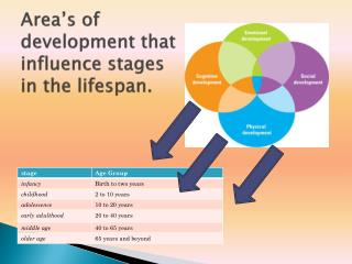 Area's of development that influence stages in the lifespan.