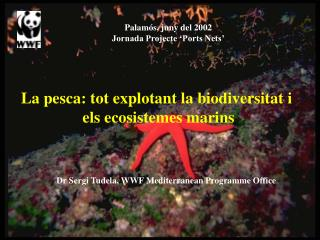La pesca: tot explotant la biodiversitat i  els ecosistemes marins