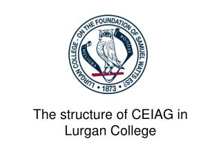 The structure of CEIAG in Lurgan College