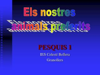 PESQUIS 1 IES Celestí Bellera Granollers