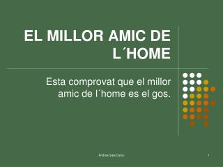 EL MILLOR AMIC DE L´HOME