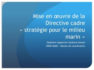 Mise en œuvre de la Directive cadre «stratégie pour le milieu marin»