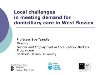 Local challenges  in meeting demand for domiciliary care in West Sussex