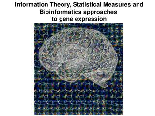 Information Theory, Statistical Measures and Bioinformatics approaches  to gene expression
