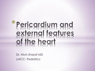 Pericardium and external features of the heart