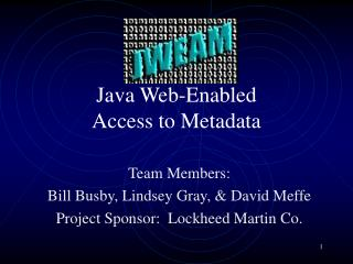 Java Web-Enabled  Access to Metadata