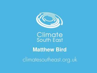 Matthew Bird