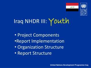 United Nations Development Programme Iraq