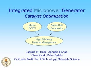 Integrated  Micropower  Generator Catalyst Optimization