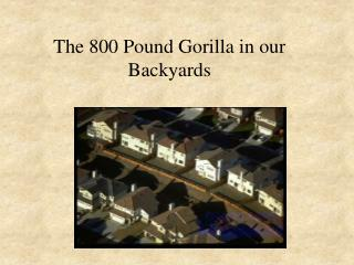 The 800 Pound Gorilla in our Backyards