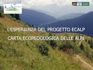L'ESPERIENZA DEL PROGETTO ECALP CARTA ECOPEDOLOGICA DELLE ALPI