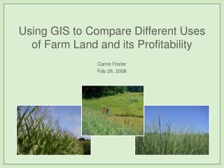 Using GIS to Compare Different Uses of Farm Land and its Profitability