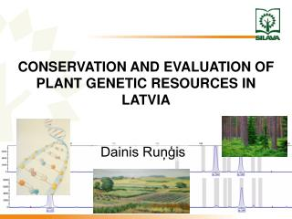 CONSERVATION AND EVALUATION OF PLANT GENETIC RESOURCES IN LATVIA