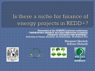 Is there  a  niche for finance  of   energy projects  in REDD+?