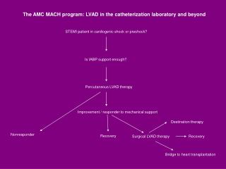 STEMI patient in cardiogenic shock or preshock?