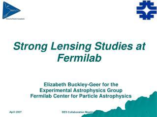 Strong Lensing Studies at Fermilab