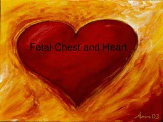 Fetal Chest and Heart