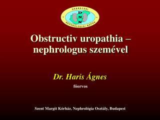 Obstructiv uropathia – nephrologus szemével