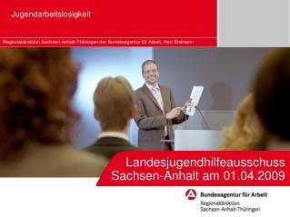 Landesjugendhilfeausschuss Sachsen-Anhalt am 01.04.2009