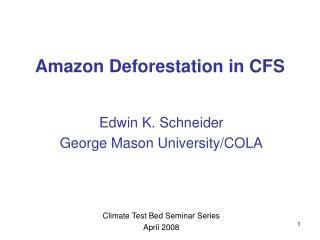 Amazon Deforestation in CFS