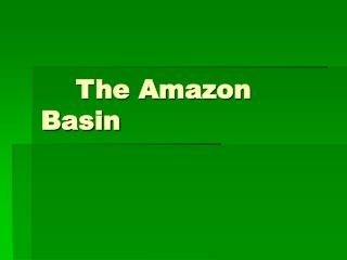 The Amazon Basin