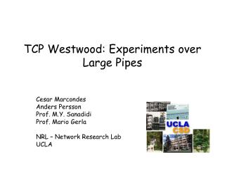 TCP Westwood: Experiments over Large Pipes
