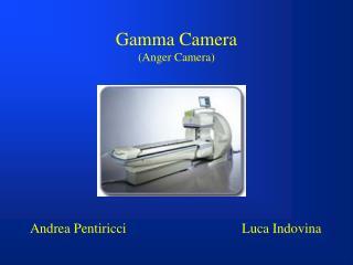 Gamma Camera (Anger Camera)