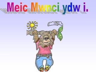 Meic Mwnci ydw i.
