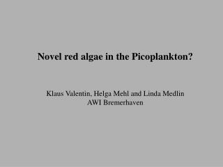 Novel red algae in the Picoplankton? Klaus Valentin, Helga Mehl and Linda Medlin AWI Bremerhaven