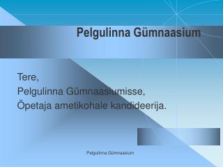 Pelgulinna Gümnaasium